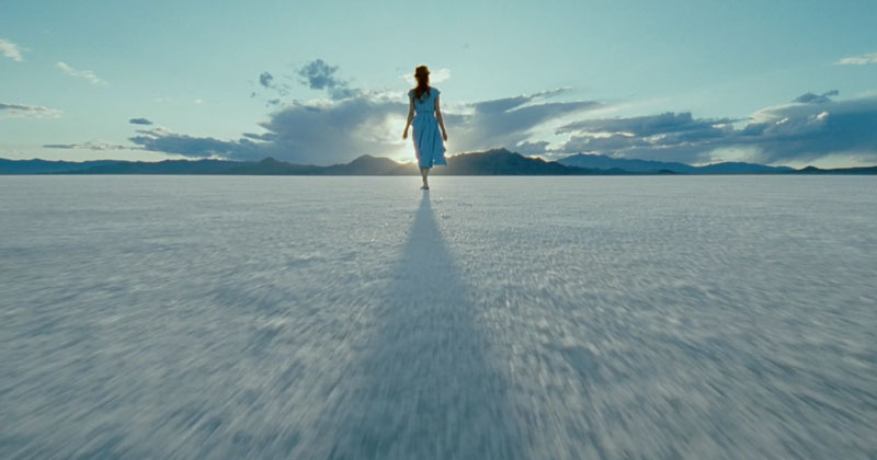 Terrence Malick: The Tree of Life