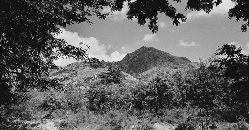 Ditmar Bollaert: Arunachala Pradakshina