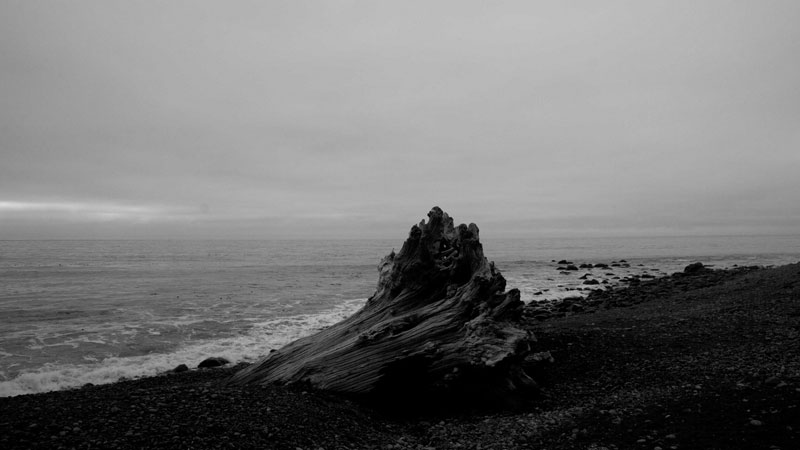 M. A. Littler, Lost Coast - The Culturium