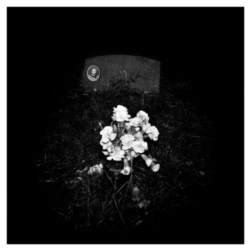 Kon Markogiannis, Flowers - The Culturium