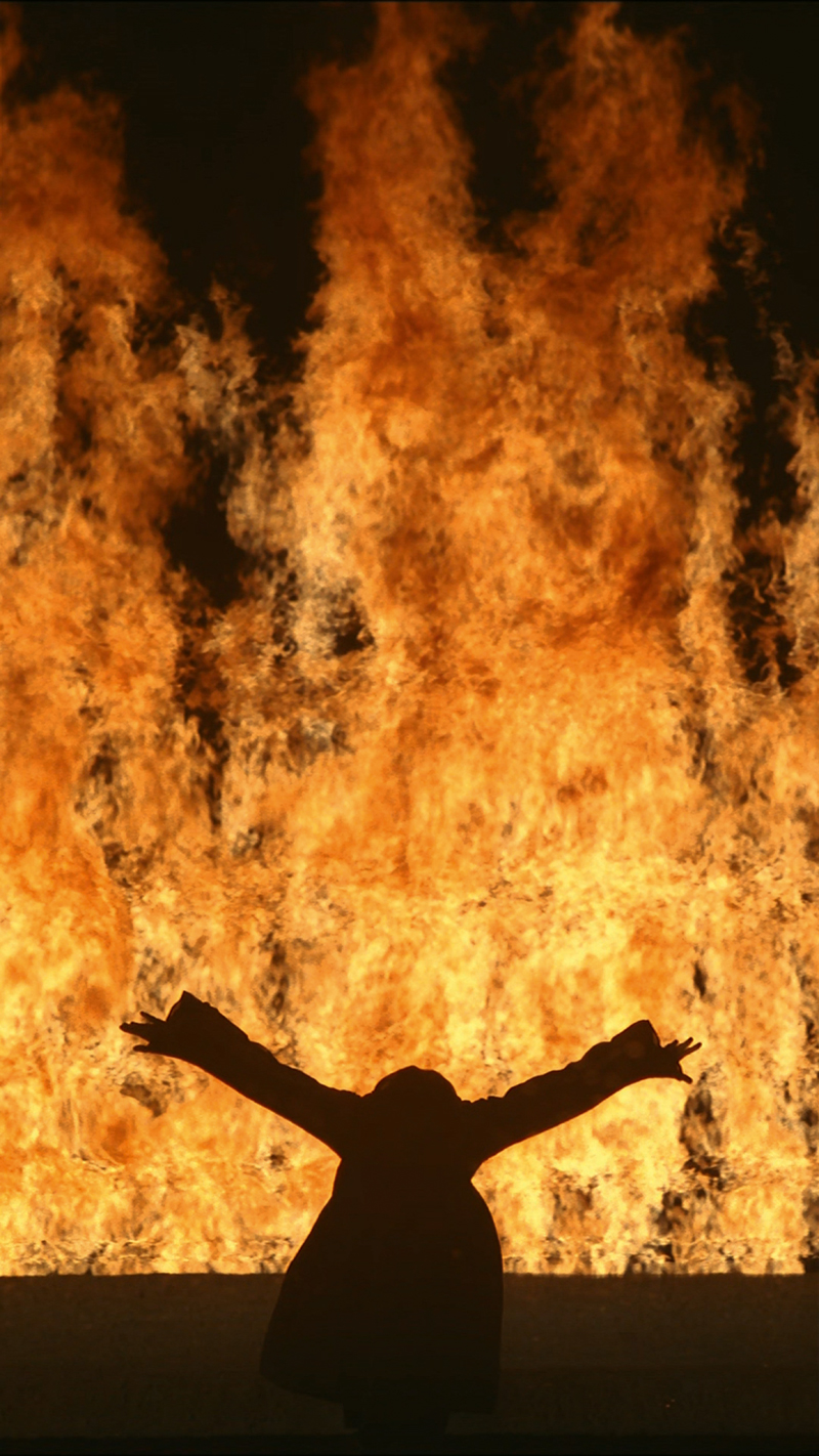 Bill Viola, Fire Woman, 2005 - The Culturium