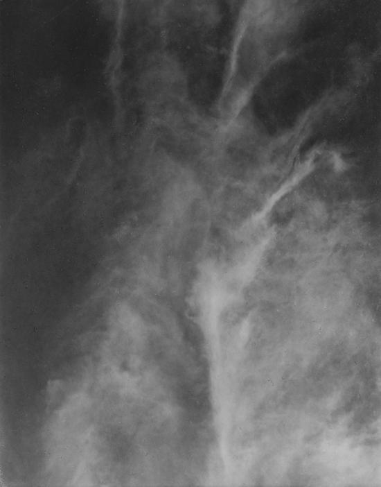 Alfred Stieglitz, Equivalents - The Culturium