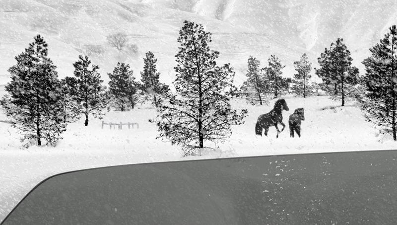 Abbas Kiarostami, 24 Frames - The Culturium