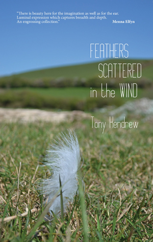 Tony Kendrew, Feathers Scattered in the Wind - Tony Kendrew